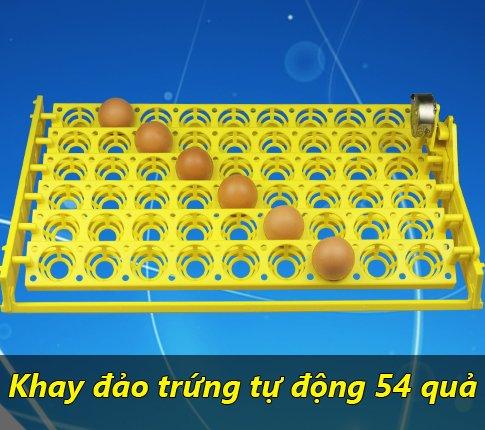 khay đảo trứng tự động 54 quả