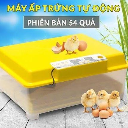 dẫn cách kiểm tra nhiệt độ máy ấp trứng