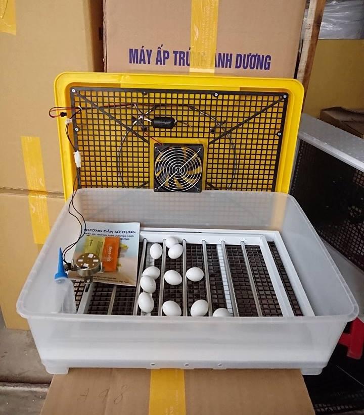 máy ấp trứng a100