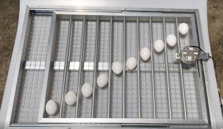 khay đảo lăn trứng tự động